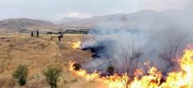 بیش از ۳۲ مورد آتش سوزی زمین کشاورزی و خار و خاشاک در هفته ای که گذشت